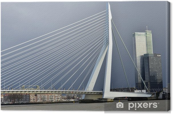 Obraz na płótnie Erasmus Bridge w Rotterdamie - Infrastruktura