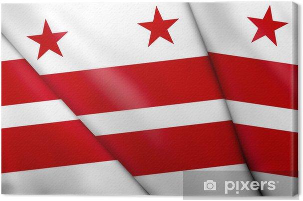Obraz na płótnie Flag of Washington, DC - Wakacje