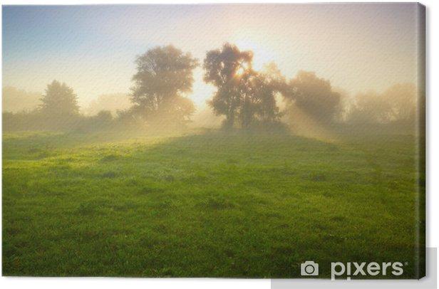 Obraz na płótnie Foggy łąka o świcie - Pory roku