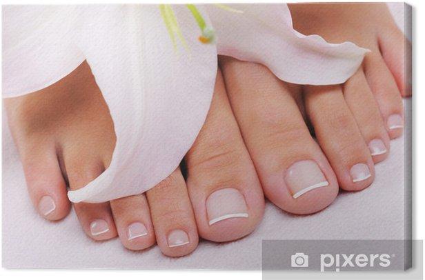 Obraz na płótnie French pedicure na samicy stóp - Uroda i pielęgnacja ciała