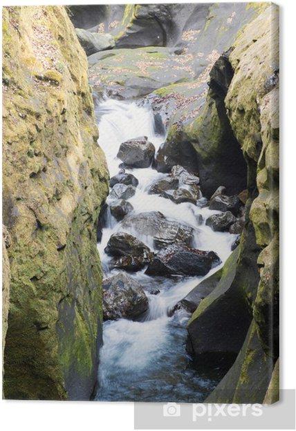 Obraz na płótnie Fringe Takachiho Gorge - Inne pejzaże