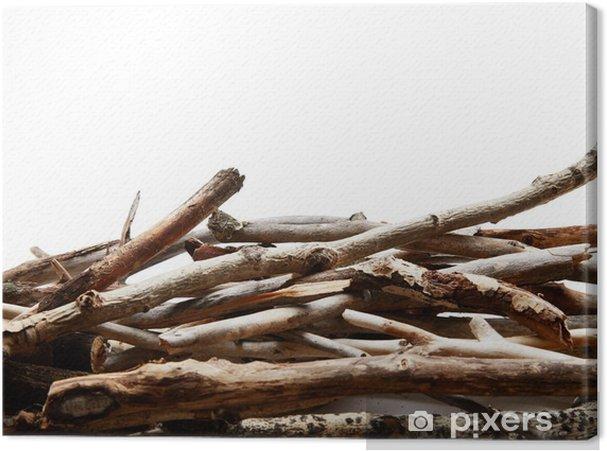 Obraz na płótnie Gałęzi drzew - Drzewa
