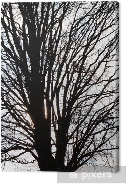 Obraz na płótnie Gałęzie drzewa - Etyka