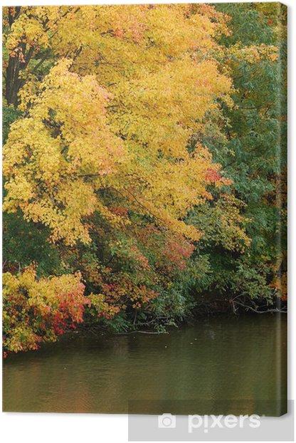 Obraz na płótnie Golden Pond - Woda