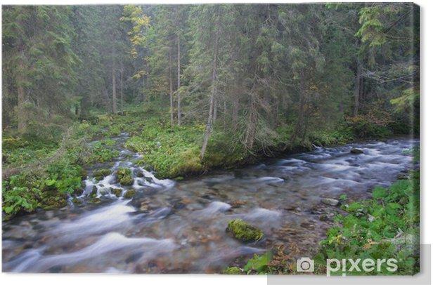 Obraz na płótnie Górskie potoki w lesie - Woda