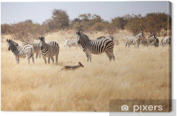 Obraz na płótnie Grupa zebry w parku narodowym Namibii - Tematy