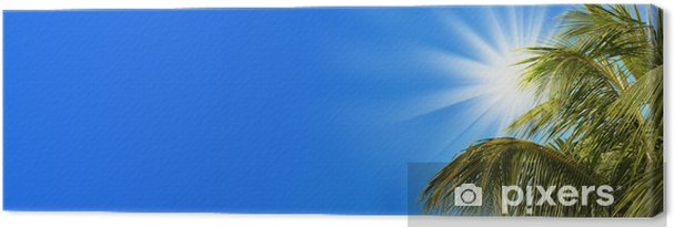 Obraz na płótnie Header soleil palmier fundusz ciel bleu - Wakacje