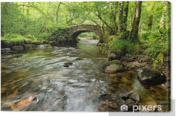 Obraz na płótnie Hisley Most na Dartmoor - Tematy
