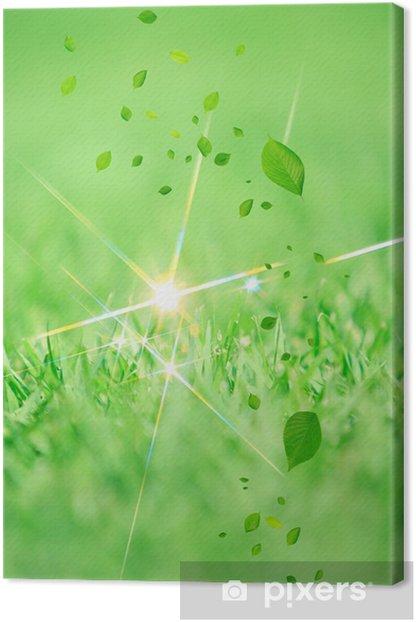 Obraz na płótnie I użytków zielonych liści - Rośliny