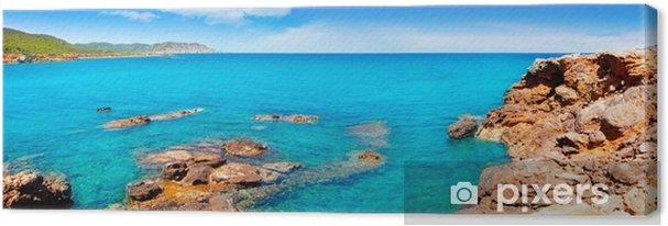 Obraz na płótnie Ibiza island na Canal d Marti Pou des LLEO plaży - Tematy