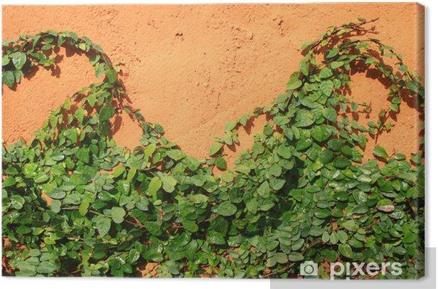 Obraz na płótnie Ivy pod pomarańczowe ściany - Drzewa