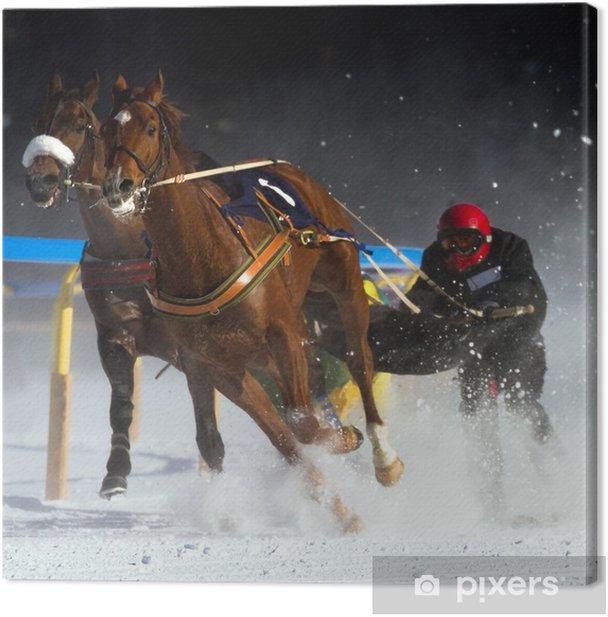 Obraz na płótnie Jazdę konną i narty - Sporty indywidualne