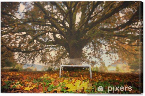 Obraz na płótnie Jesień - Pory roku