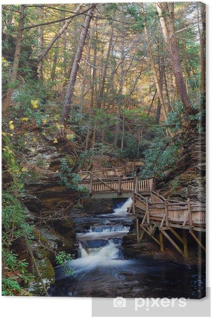 Obraz na płótnie Jesienią creek z szlaków turystycznych i liści - Pory roku