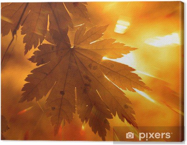 Obraz na płótnie Jesienny projekt - Pory roku
