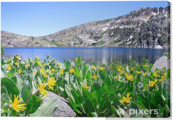 Obraz na płótnie Jezioro Winnemuccaobraz - Pory roku