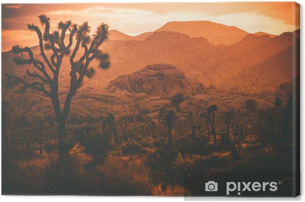 Obraz na płótnie Joshua drzew California Desert - Inne pejzaże