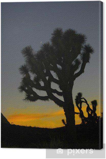 Obraz na płótnie Joshua tree i księżyc - Religie