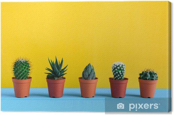 Obraz na płótnie Kaktus na biurku z żółtym wal - Rośliny i kwiaty