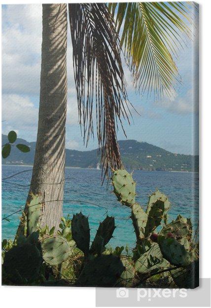 Obraz na płótnie Kaktusy i palmy na bezludnej wyspie - Wakacje