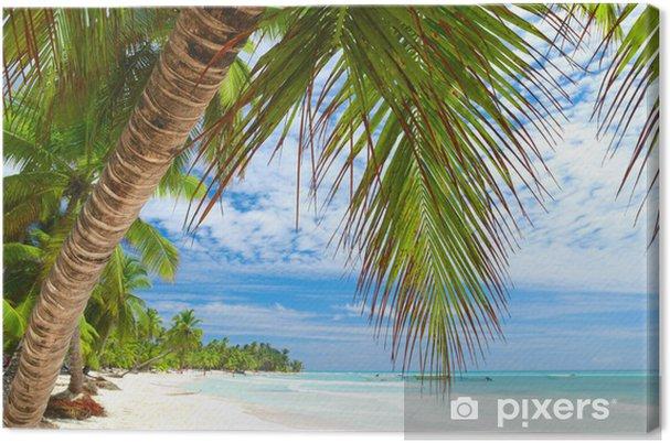 Obraz na płótnie Karaiby plaży - Wakacje