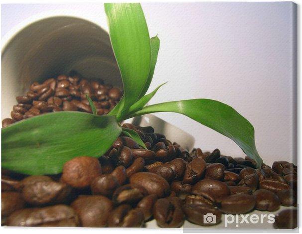 Obraz na płótnie Kawa roślin - Tematy