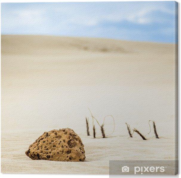 Obraz na płótnie Kawałek skały na wydmach, Te rezerwy Paki, Cape Reinga, nowa - Oceania