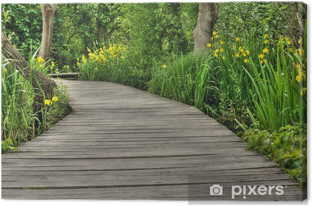 Obraz na płótnie Kładka w Parku Narodowym Krka, Chorwacja - Europa