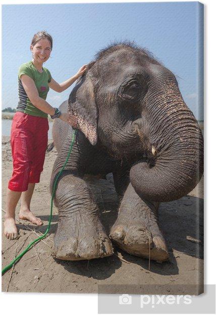 8ddc5875f895fa Obraz na płótnie Kobieta gra z słonia w rzece • Pixers® • Żyjemy by ...