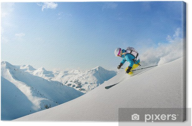 Obraz na płótnie Kobieta narciarz freeride - Sport