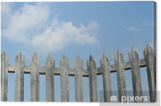 Obraz na płótnie Kolec ogrodzenia. - Życie