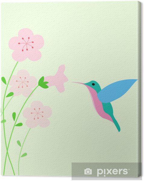 Obraz na płótnie Koliber tle - Ptaki