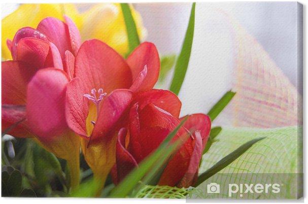 Obraz na płótnie Kolorowe Freesias - Kwiaty