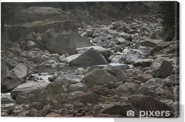 Obraz na płótnie Koryto rzeki - Europa