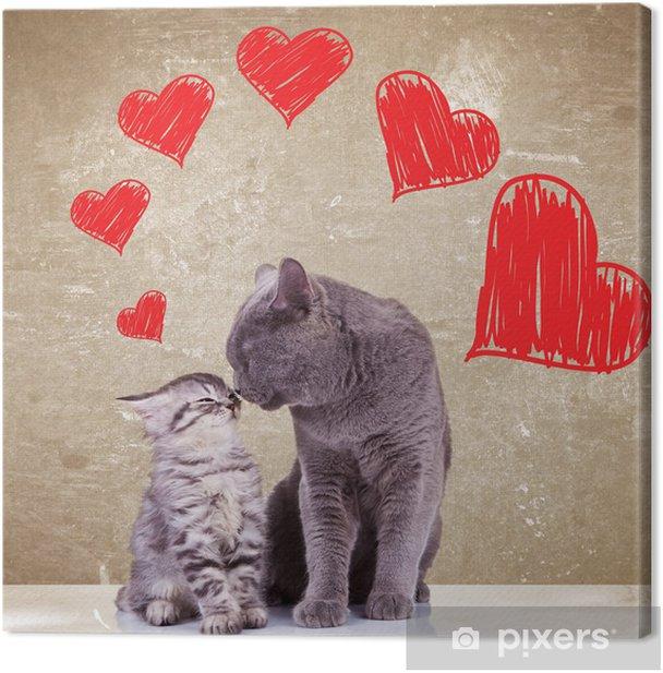 Obraz na płótnie Koty całuje na Walentynki - Tematy