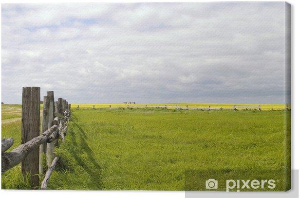 Obraz na płótnie Krajobraz łąka - linia ogrodzenia - Ameryka