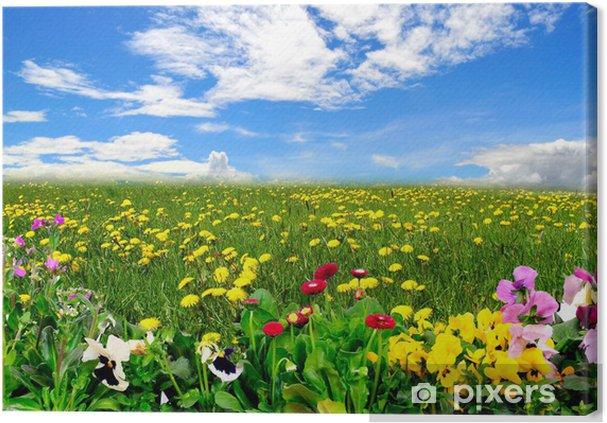 Ogromny Obraz na płótnie Krajobraz łąka niebo wiosenne kwiaty • Pixers WH53