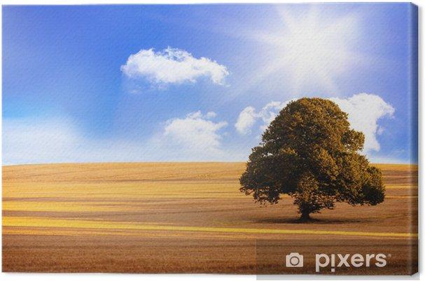 Obraz na płótnie Krajobraz słoneczny brązowy - Tła