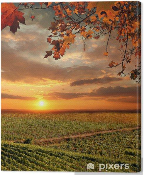 Obraz na płótnie Krajobraz Vine in Chianti, Włochy - Tematy