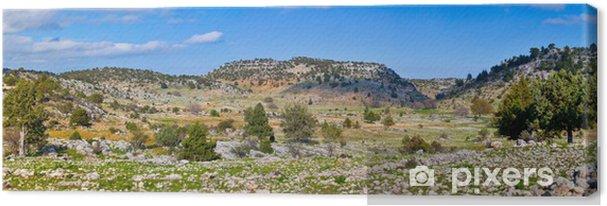 Obraz na płótnie Krajobrazu wiejskiego w Turcji - Bliski Wschód