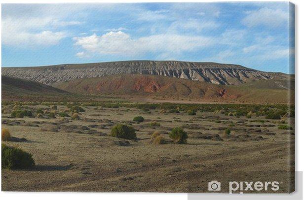Obraz na płótnie Krajobrazy na Lipez - Ameryka
