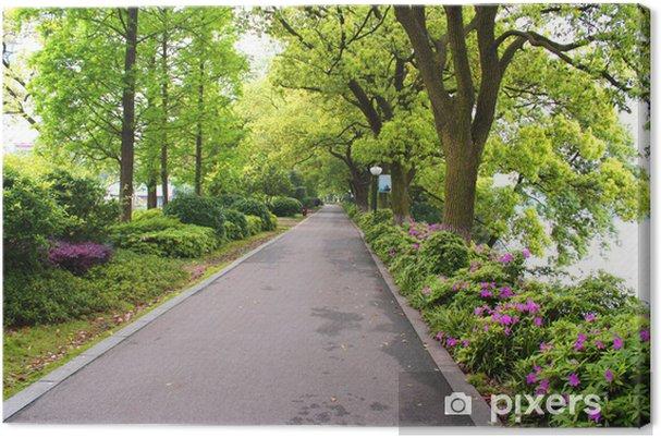 Obraz na płótnie Krajobrazy z chińskiej parku. Changsha miasto. Chiny. - Azja