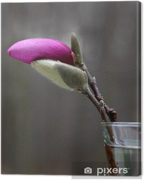 Obraz na płótnie Kumple - Kwiaty