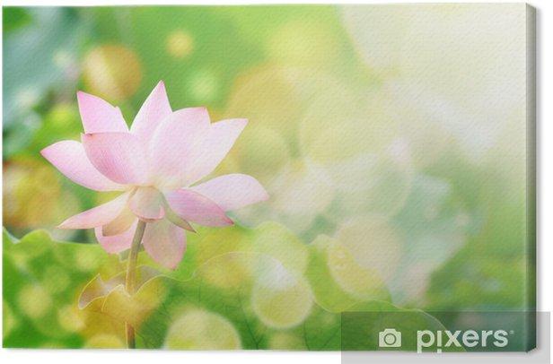 Obraz na płótnie Kwiat lotosu - Szczęście