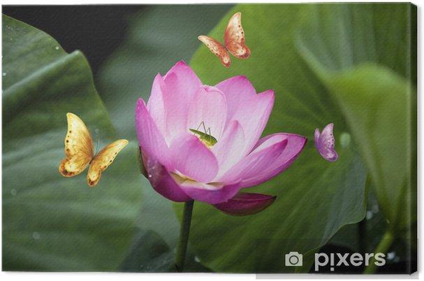 Obraz na płótnie Kwiat lotosu - Kwiaty