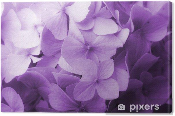 Obraz na płótnie Kwiatowe tło - Kwiaty
