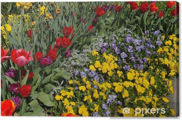 Obraz na płótnie Kwiatowy krajobraz - Kwiaty