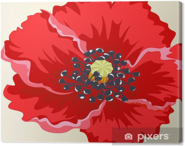 Obraz na płótnie Kwiaty - Kwiaty