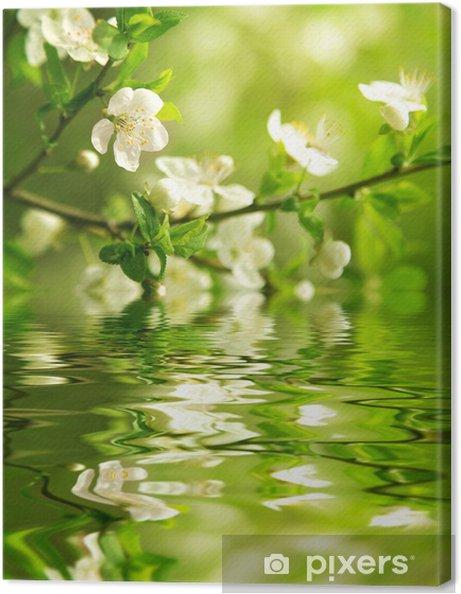 Obraz na płótnie Kwitnąca gałąź - Tematy