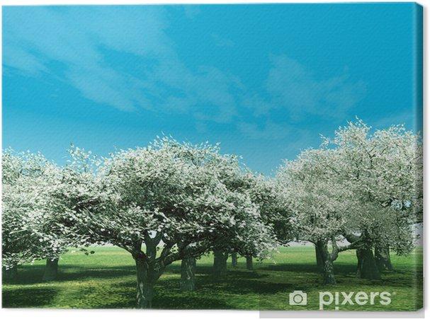 Obraz na płótnie Kwitnące drzewa wiśniowego - Tematy